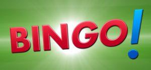 Lottostiftung Bingo-Logo